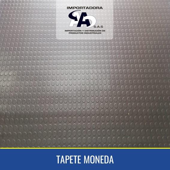 TAPETE MONEDA